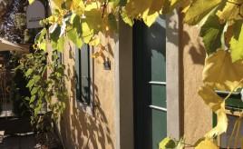 Herbst am Lummerschen Backhaus